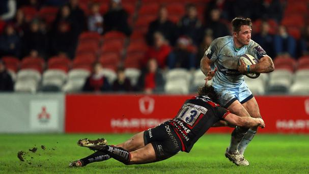 Worcester's Scotland centre Alex Grove has joined London Scottish on loan