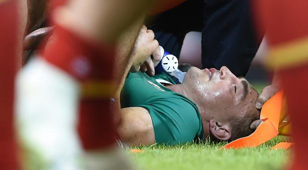 Tommy O'Donnell, pictured, is treated on the Millennium Stadium turf after dislocating a hip against Wales in August