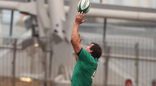 Mike McCarthy, top, will be sidelined for the rest of the season after being concussed against France