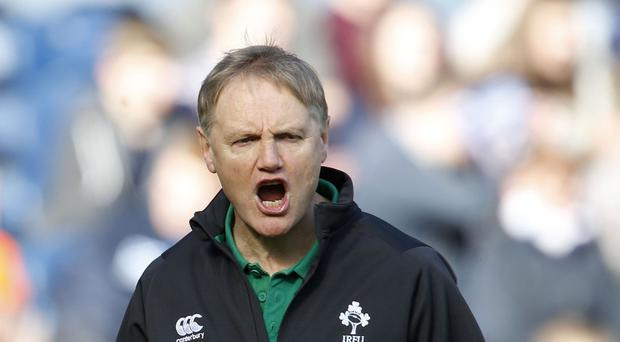 Joe Schmidt, pictured, will decide his long-term future after Ireland's summer tour to South Africa