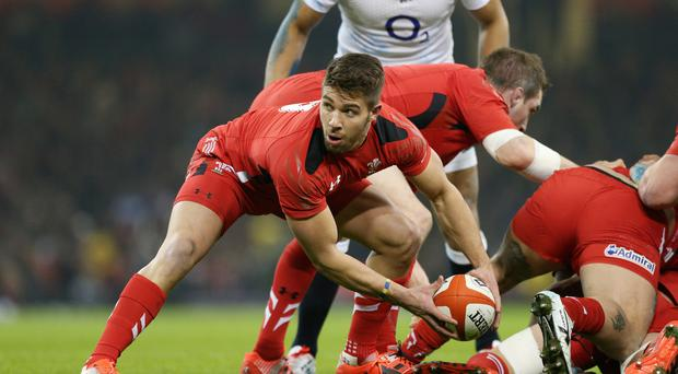 Scrum-half Rhys Webb will make his first Wales start since September in Saturday's Six Nations clash against Italy