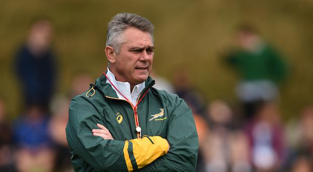 Heyneke Meyer, pictured, has been replaced by Allister Coetzee as South Africa coach