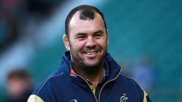 Michael Cheika has extended his contract as Australia coach