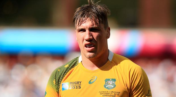Michael Cheika has opted for Sean McMahon, pictured, to fill the void at number eight