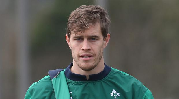 Ireland's Andrew Trimble, pictured, will share the Ulster captaincy with Rob Herring for the 2016-17 season