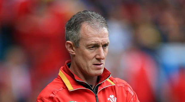 Wales head coach Rob Howley, pictured, will have Cardiff Blues' Matt Sherratt as part of his support staff during this season's autumn Test series