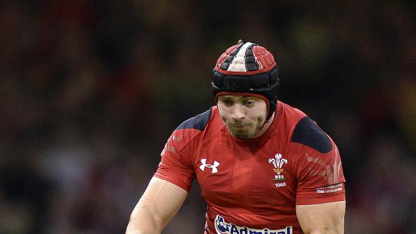 Leigh Halfpenny will be back in action for Wales when they face Australia on Saturday