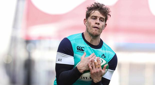 On the up: Andrew Trimble will earn his 68th Ireland cap in Dublin