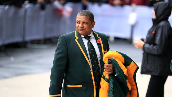 Coach Allister Coetzee insists he should not take all the blame for South Africa's awful run of results