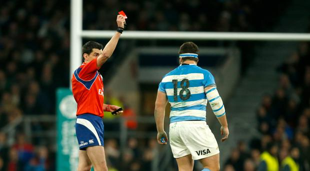 Argentina prop Enrique Pieretto is sent off by referee Pascal Gauzere during last Saturday's Test match against England at Twickenham