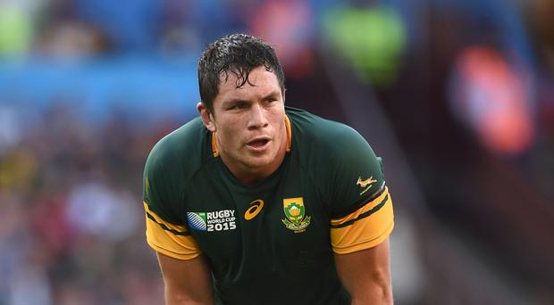 Bath flanker Francois Louw will return to action after injury in Thursday's European Challenge Cup clash against Cardiff Blues
