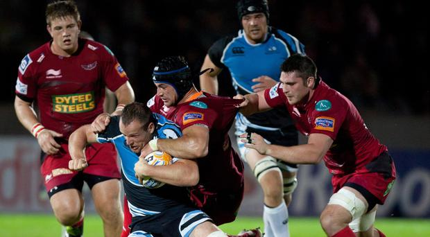 George Earle, wearing the head guard during his time at Scarlets, will serve an eight-week suspension