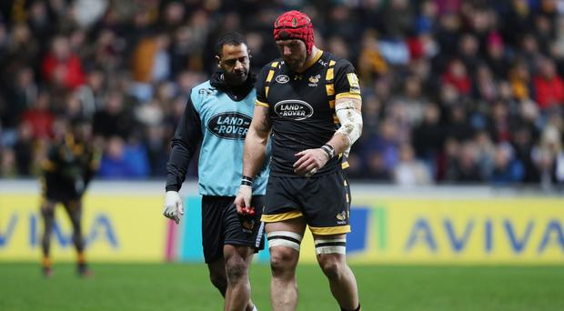 Wasps' James Haskell suffered a head injury against Leicester on Sunday