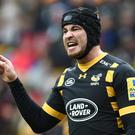 Danny Cipriani scored 16 points for Wasps