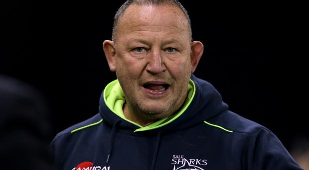 Steve Diamond's Sale won at the Stoop