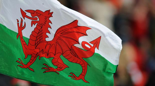 Wales' planned summer Test match against Tonga will not take place in the South Sea Islands