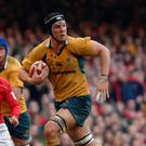 Dan Vickerman played 63 times for Australia