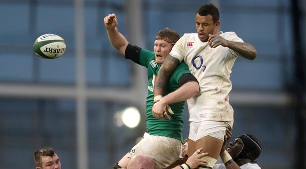Courtney Lawes is feasting on a diet of regular England inclusion