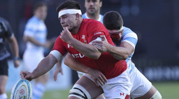 Ellis Jenkins and Wales have impressed in Argentina (Nicolas Aguilera/AP)