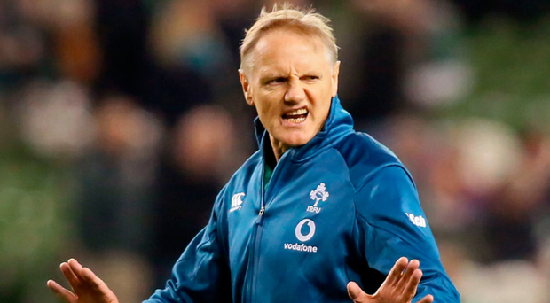 Last hurrah: Joe Schmidt will be channelling everything into the 2019 World Cup bid