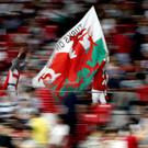 Fans of Wales show their support in the stands with a flag of Wales during the 2019 Rugby World Cup Pool D match at City of Toyota Stadium, Japan.