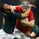 Wales beat South Africa 20-11 in November 2018 (David Davies/PA)
