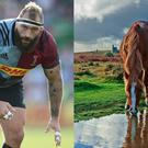 Joe Marler and a horse (Adam Davy/PA/Peter Llewellyn/Getty)