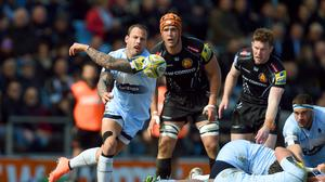 Worcester scrum-half Francois Hougaard faces a lengthy spell on the sidelines due to a shoulder injury