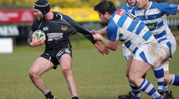 Gripping stuff: Ricky Andrew (left) is set to be handed a key role for Ballymena against Belfast Harlequins