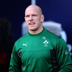 Ireland and Munster captain Paul O'Connell, pictured, will aim to lead his side into the semi-finals of the Heineken Cup