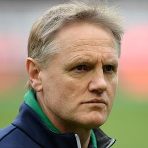 Ireland head coach Joe Schmidt, pictured, was pleased with his side's win over Argentina