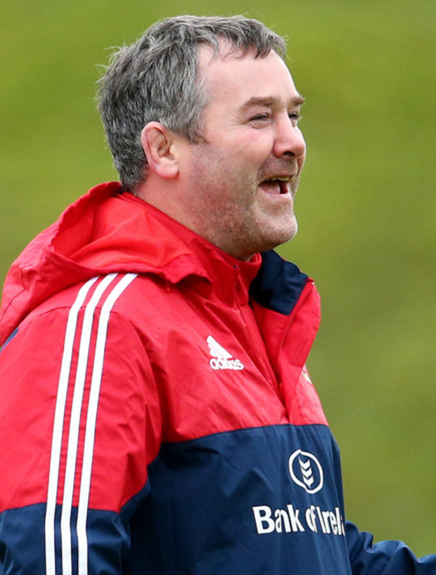 Opportunity: Anthony Foley brings in Munster big guns