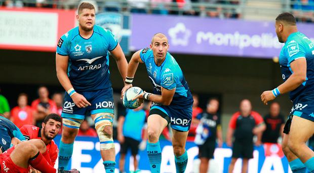 New chapter: Ruan Pienaar is eager to keep pushing on for new side Montpellier as they face Leinster in Europe