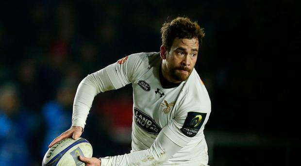 Guiding hand: Danny Cipriani is the key man for Wasps