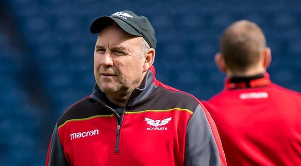Big challenge: Wayne Pivac is relishing Euro showdown