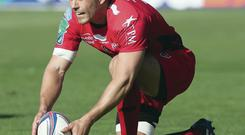 Good kicking: Jonny Wilkinson poses huge threat to Ulsterman Mark McCall's hopes of guiding Saracens to Heineken Cup win