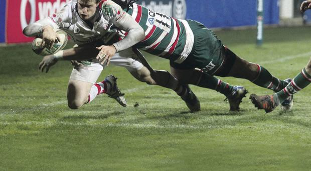 Tiger feat: Ulster winger Andrew Trimble dives in to score against Leicester in 2012