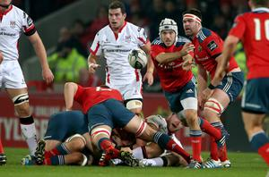 Growing reputation: Duncan Williams feels content at Munster
