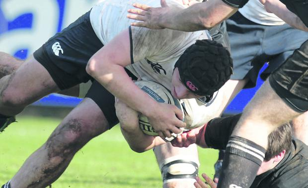 Methody's James Gallagher bursts through a challenge in last year's semi-final victory over Campbell College