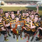 Shield of dreams: RBAI's team gather behind captain Conor Field after seeing off Campbell College at Kingspan Stadium