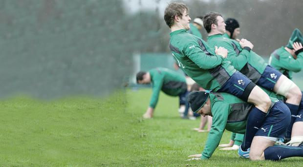 Backing: Ulster stars Andrew Trimble and Rory Best pair up for trainin