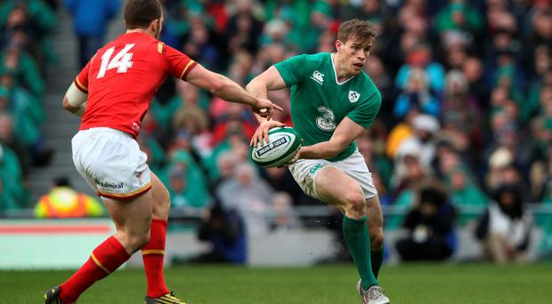 Test return: Andrew Trimble was back in a green jersey
