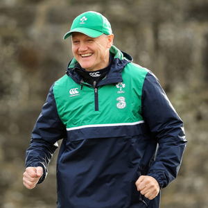 Going nowhere: Joe Schmidt is believed to have signed up to continue as Ireland boss until the World Cup in three years' time