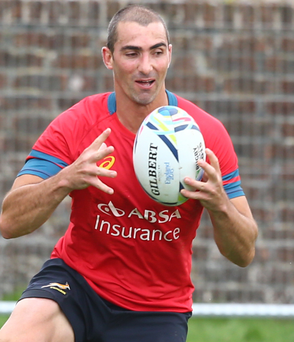 Ruan Pienaar is set for his 85th cap