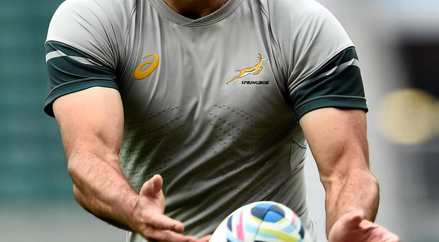 Fighting back: Fourie du Preez focused after the loss to Japan
