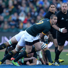 Local interest: Ruan Pienaar may play for South Africa this weekend
