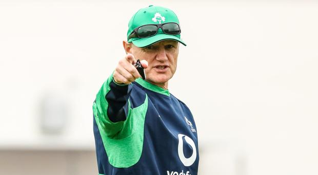 Pointing fingers: Joe Schmidt's style has been in firing line