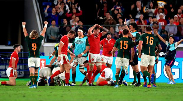 Crucial: South Africa celebrate Damian de Allende's try against Wales in semi-final