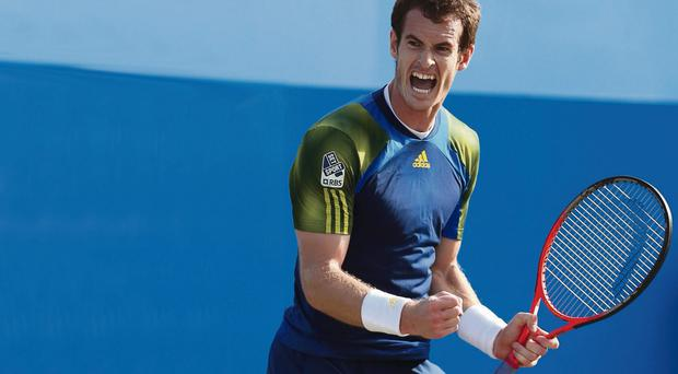 LONDON, ENGLAND - JUNE 16: Andy Murray of Great Britain celebrates victory during the Men's Singles final against Marin Cilic of Croatia on day seven of the AEGON Championships at Queens Club on June 16, 2013 in London, England. (Photo by Clive Brunskill/Getty Images)