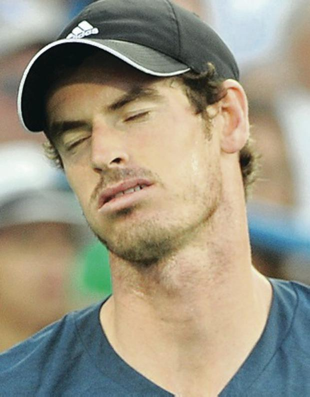 Tough going: Andy Murray has struggled this season